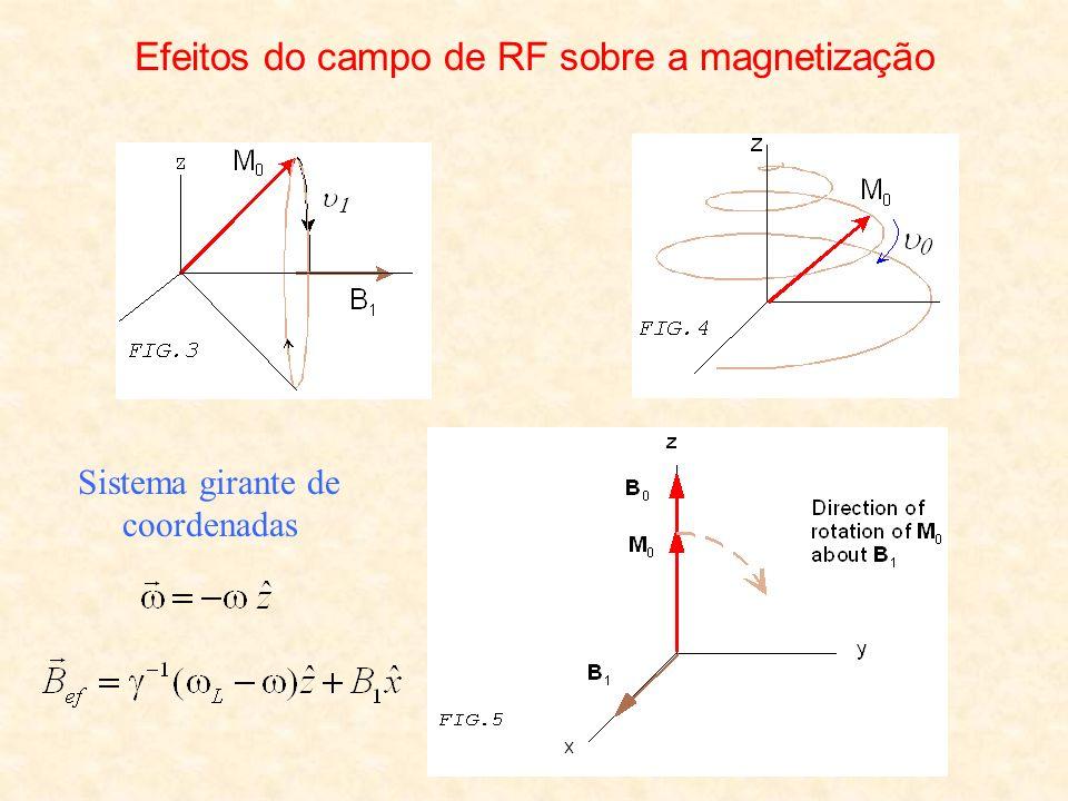 Efeitos do campo de RF sobre a magnetização