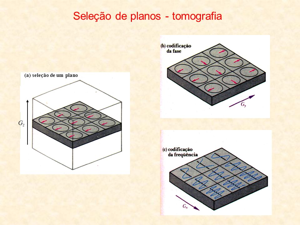 Seleção de planos - tomografia