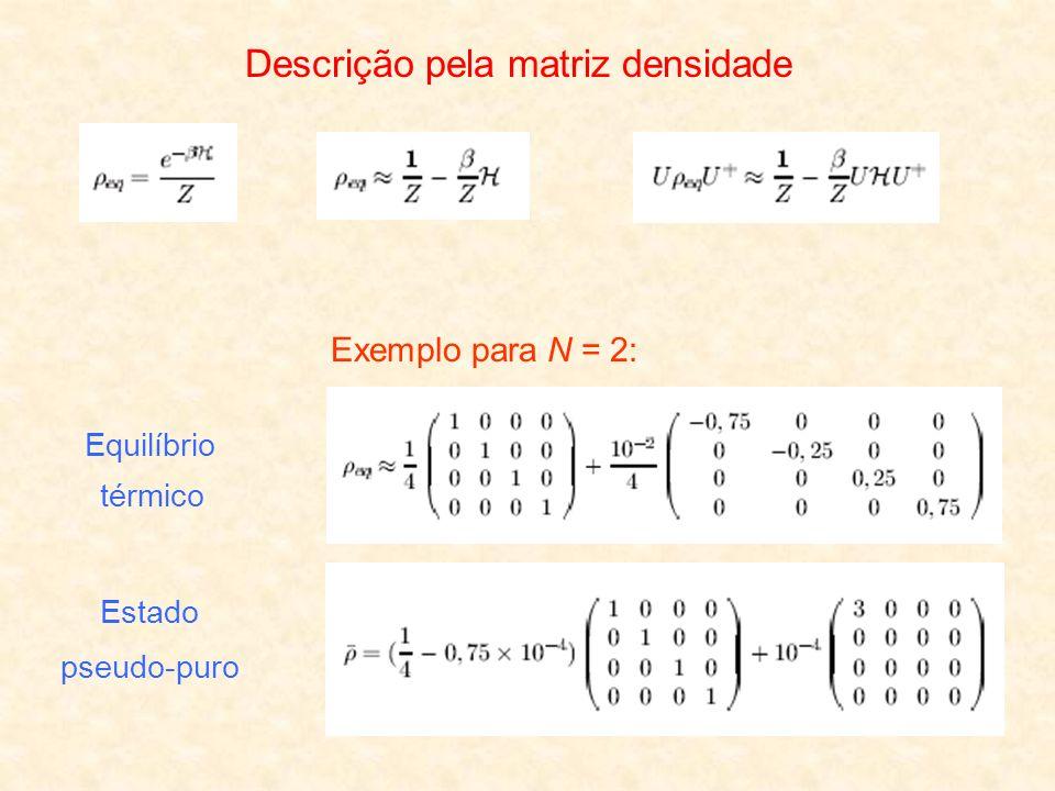 Descrição pela matriz densidade