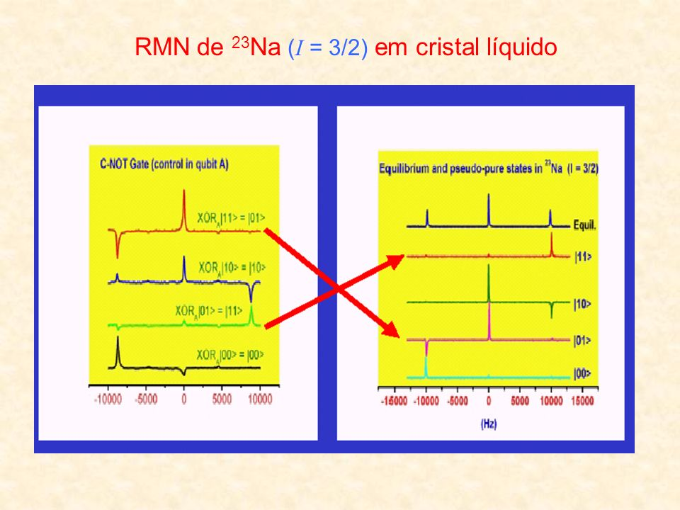 RMN de 23Na (I = 3/2) em cristal líquido