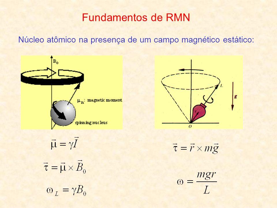 Núcleo atômico na presença de um campo magnético estático: