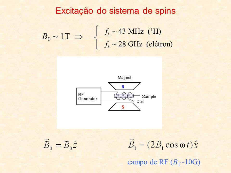 Excitação do sistema de spins