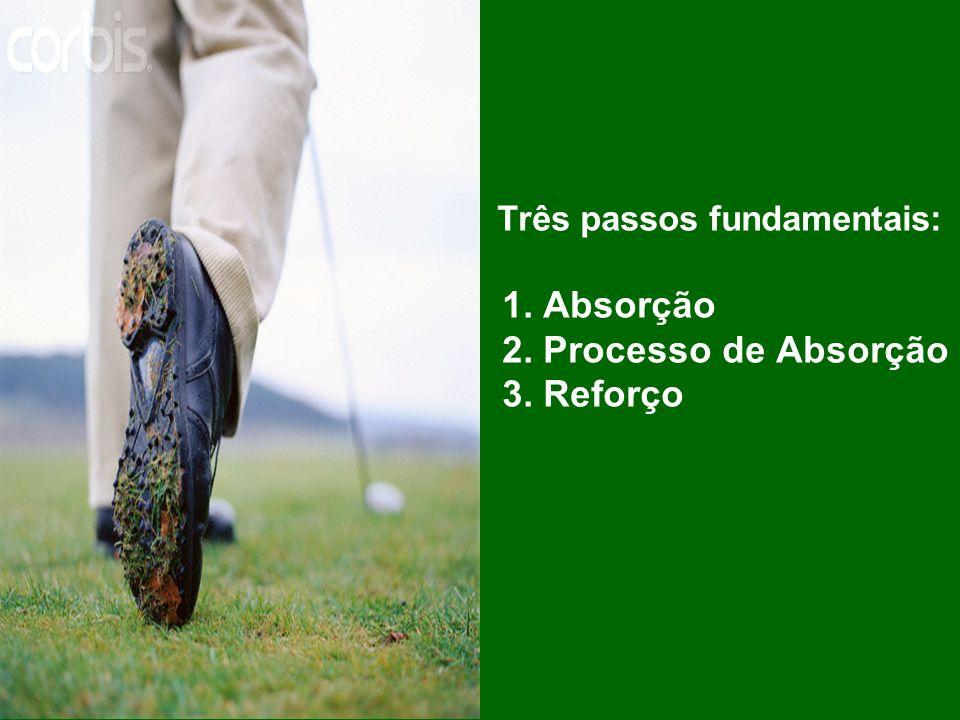 Três passos fundamentais: 1. Absorção 2. Processo de Absorção 3