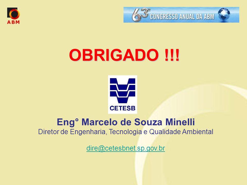 Eng° Marcelo de Souza Minelli