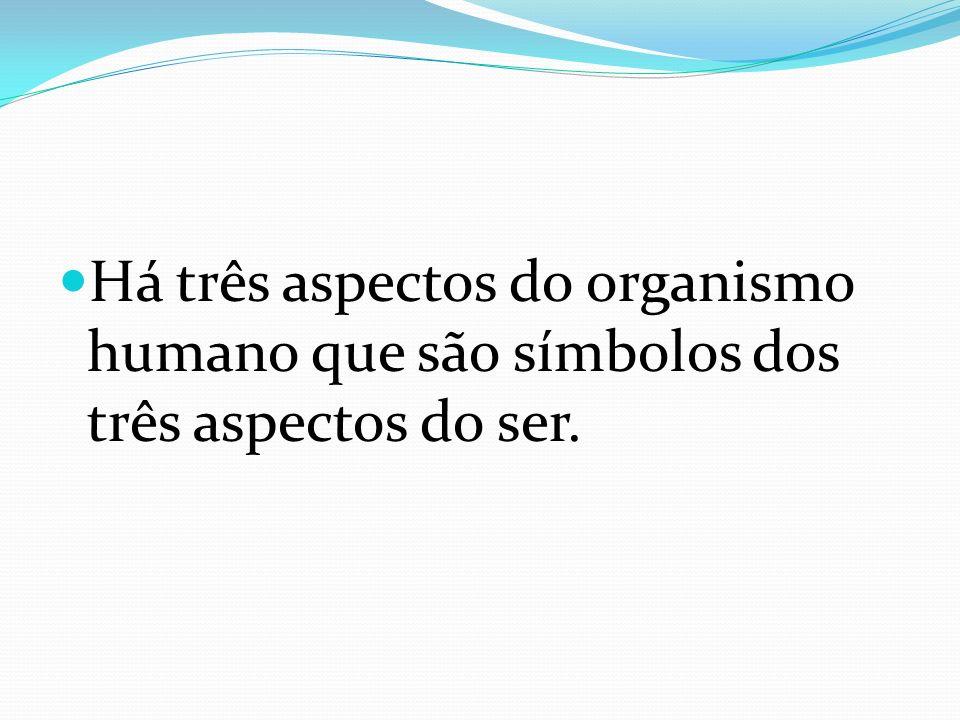 Há três aspectos do organismo humano que são símbolos dos três aspectos do ser.