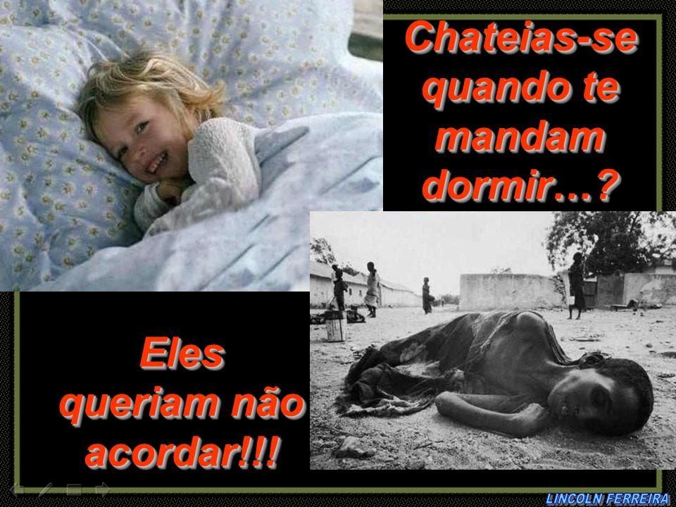 Chateias-se quando te mandam dormir… Eles queriam não acordar!!!