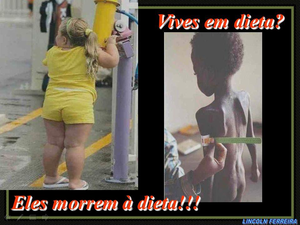 Vives em dieta Eles morrem à dieta!!! LINCOLN FERREIRA