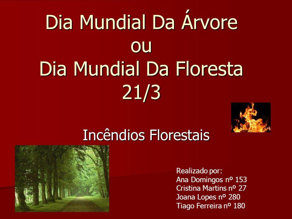 Dia Mundial Da Árvore ou Dia Mundial Da Floresta 21/3
