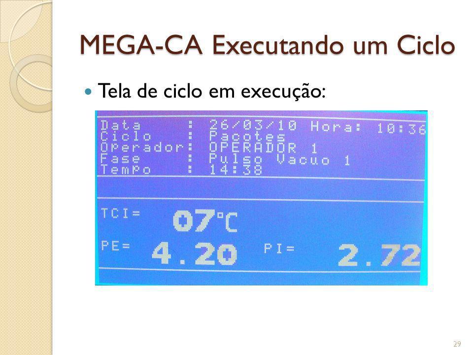 MEGA-CA Executando um Ciclo