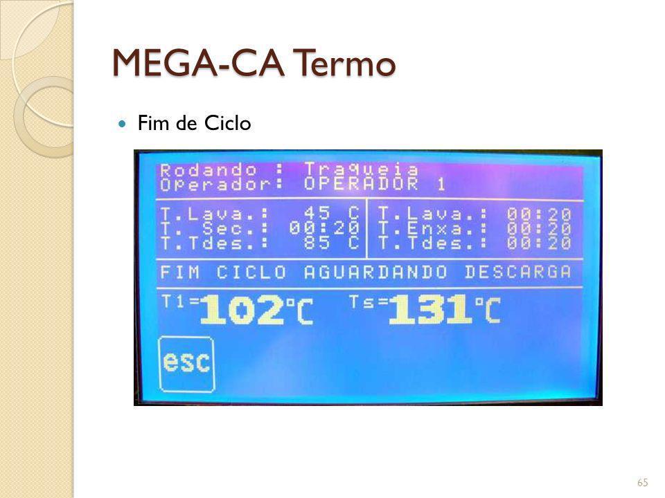 MEGA-CA Termo Fim de Ciclo