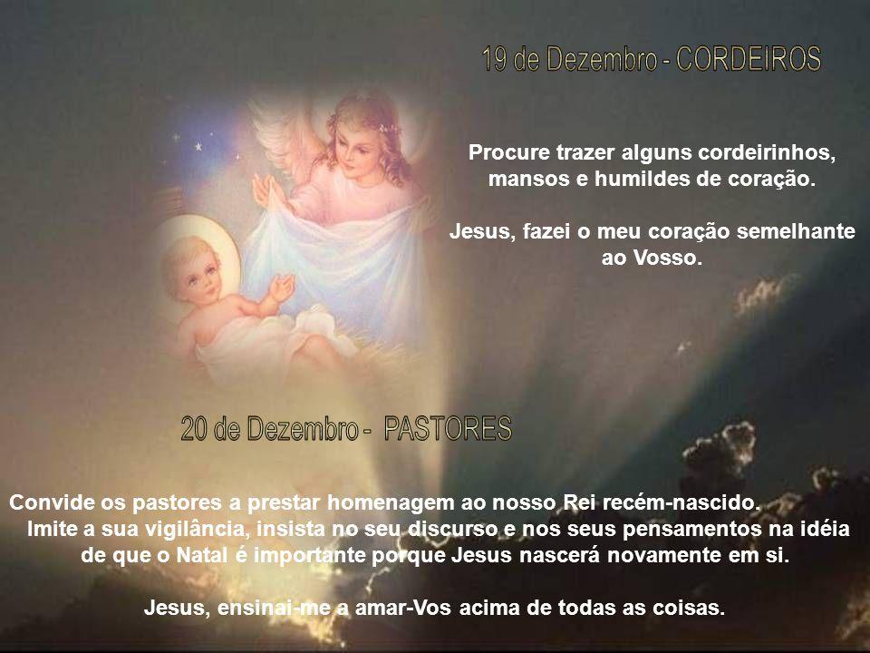 19 de Dezembro - CORDEIROS