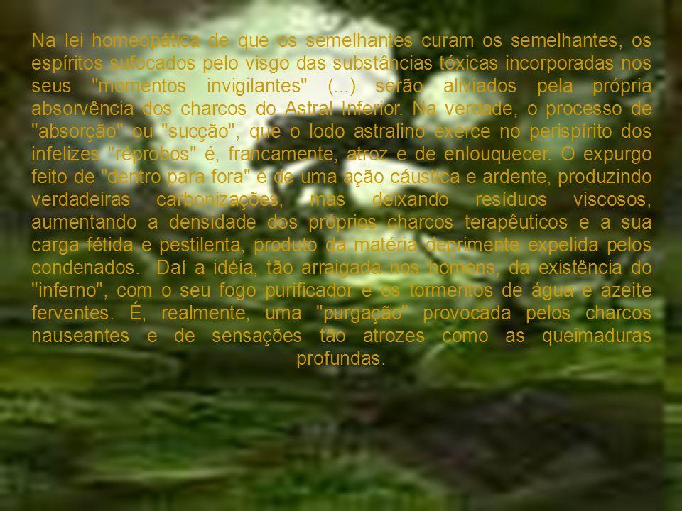 Na lei homeopática de que os semelhantes curam os semelhantes, os espíritos sufocados pelo visgo das substâncias tóxicas incorporadas nos seus momentos invigilantes (...) serão aliviados pela própria absorvência dos charcos do Astral Inferior.
