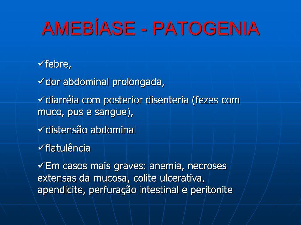 AMEBÍASE - PATOGENIA febre, dor abdominal prolongada,
