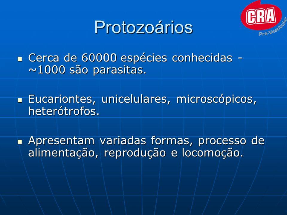 Protozoários Cerca de 60000 espécies conhecidas - ~1000 são parasitas.