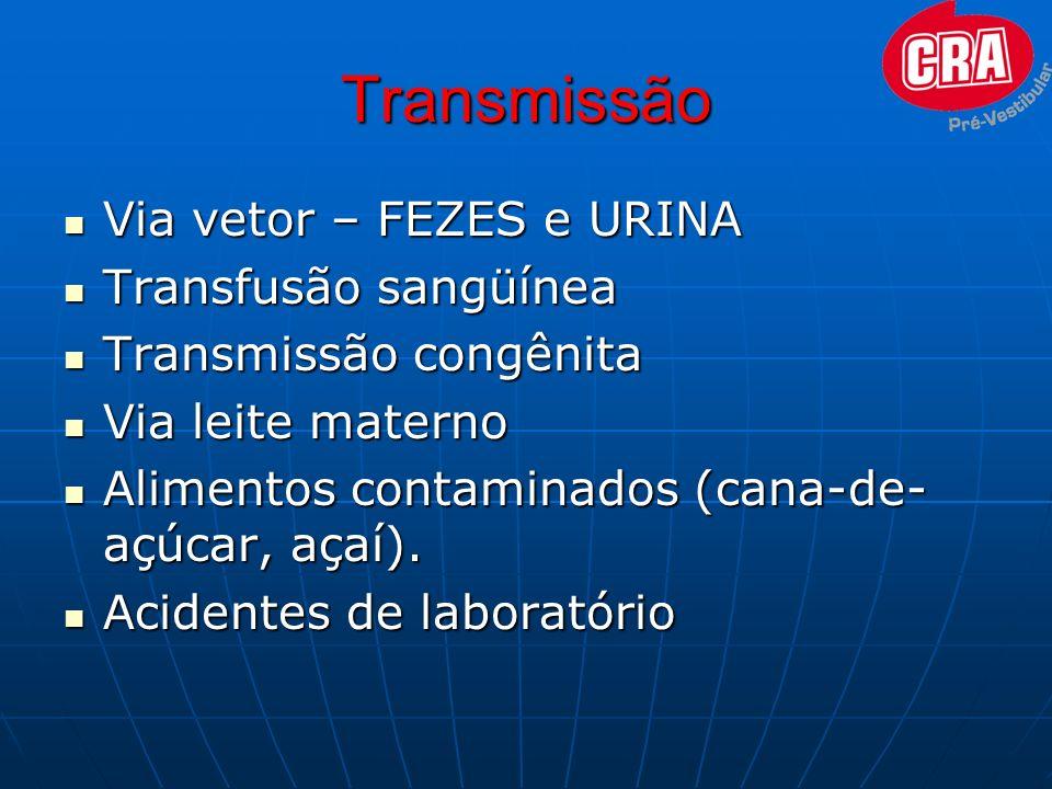 Transmissão Via vetor – FEZES e URINA Transfusão sangüínea