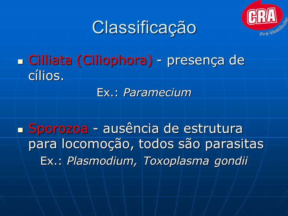 Ex.: Plasmodium, Toxoplasma gondii