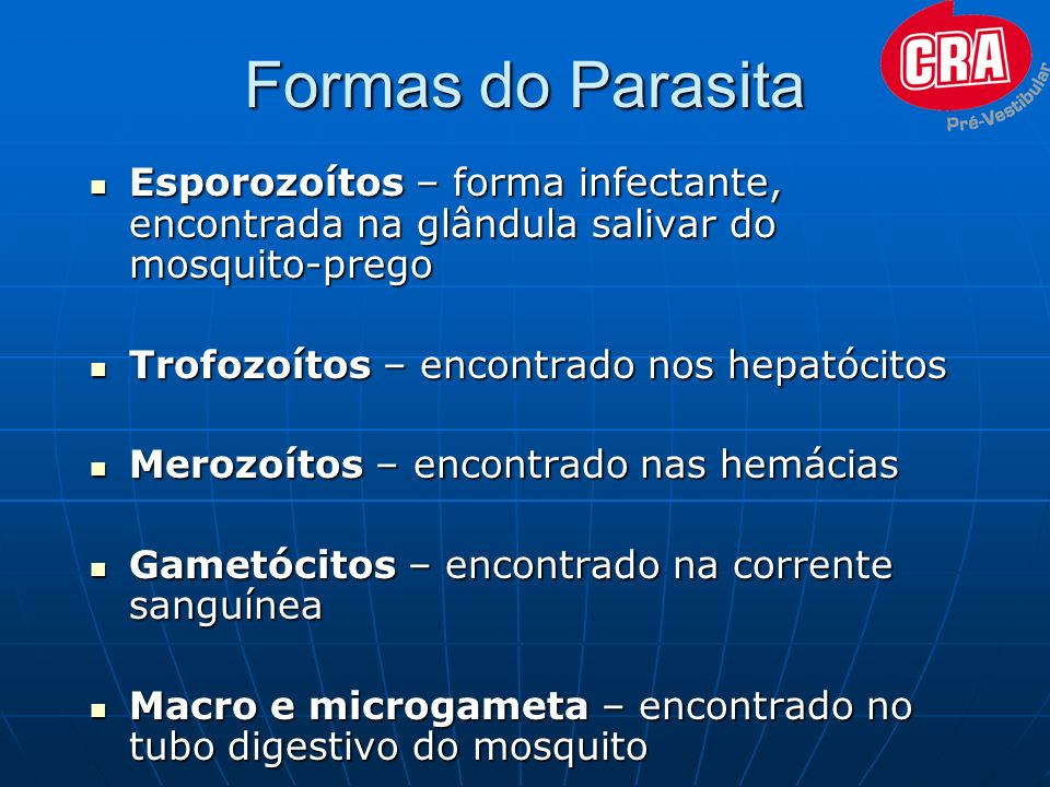 Formas do Parasita Esporozoítos – forma infectante, encontrada na glândula salivar do mosquito-prego.