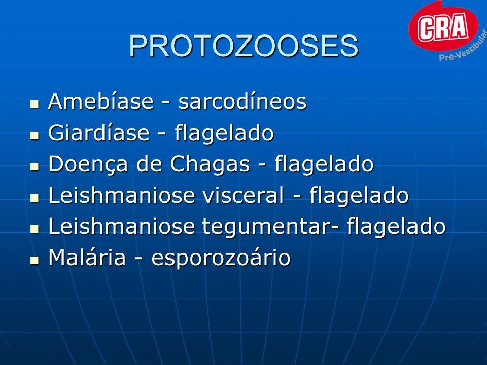 PROTOZOOSES Amebíase - sarcodíneos Giardíase - flagelado
