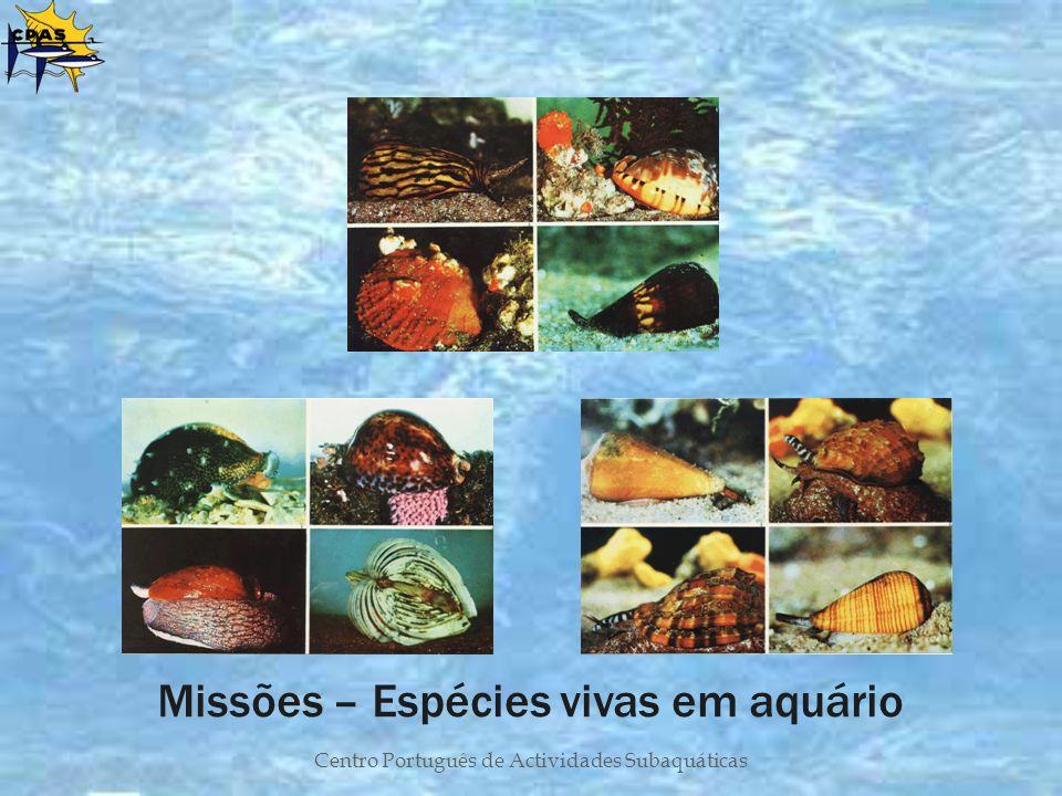 Missões – Espécies vivas em aquário