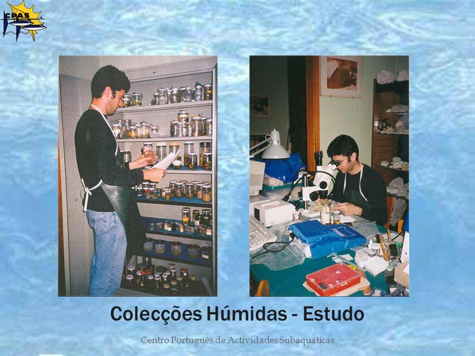 Colecções Húmidas - Estudo