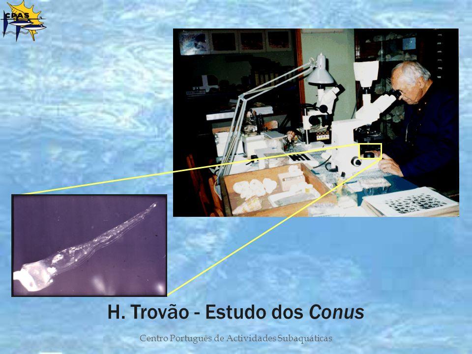 H. Trovão - Estudo dos Conus