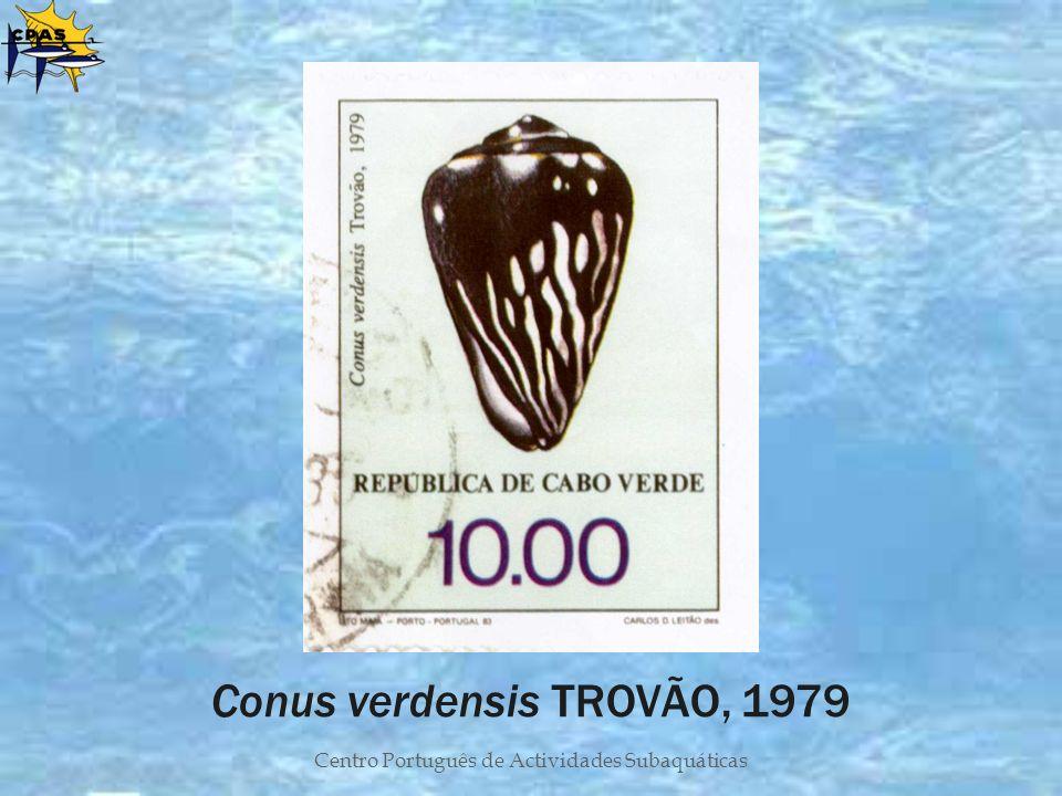 Conus verdensis TROVÃO, 1979