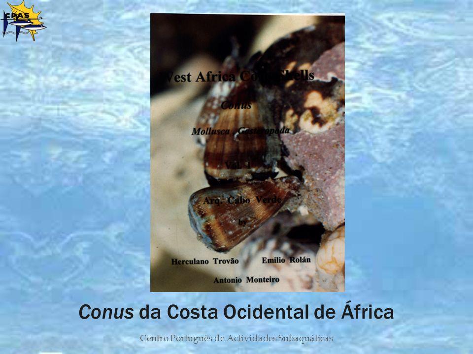 Conus da Costa Ocidental de África