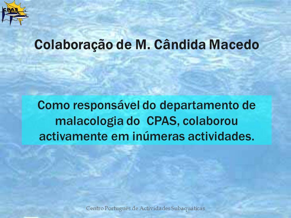 Colaboração de M. Cândida Macedo