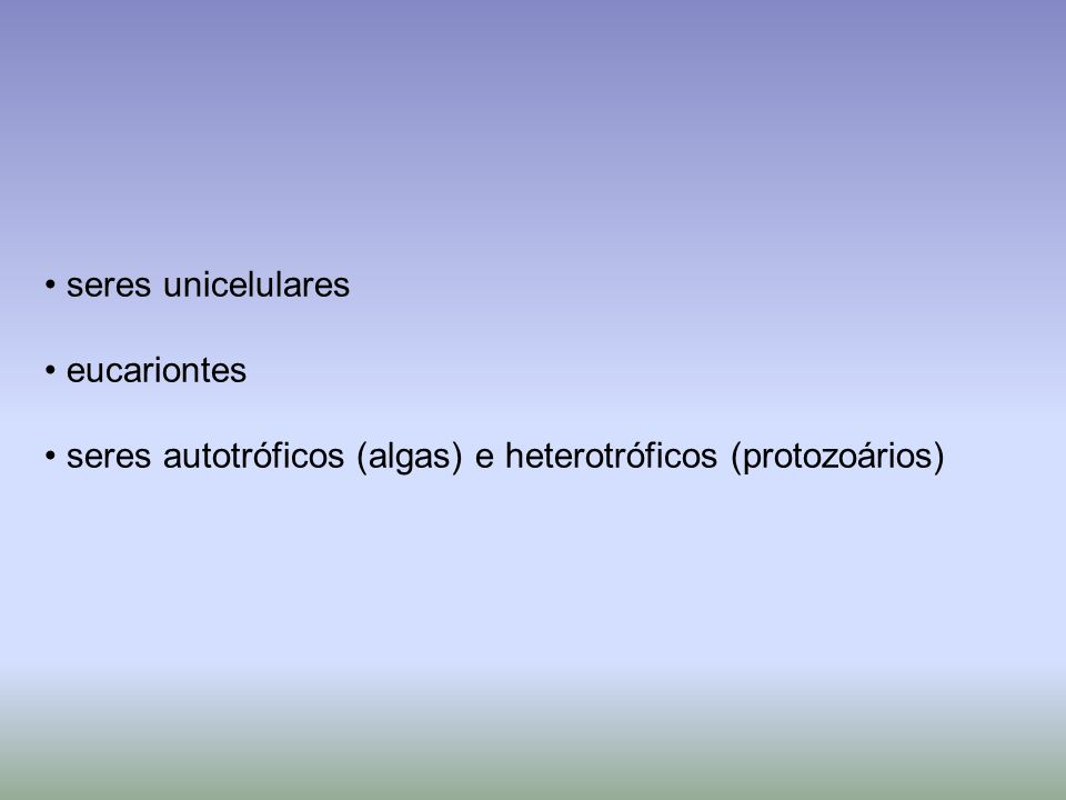 seres unicelulares eucariontes seres autotróficos (algas) e heterotróficos (protozoários)
