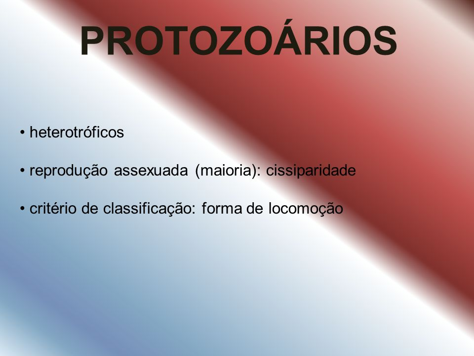 PROTOZOÁRIOS heterotróficos