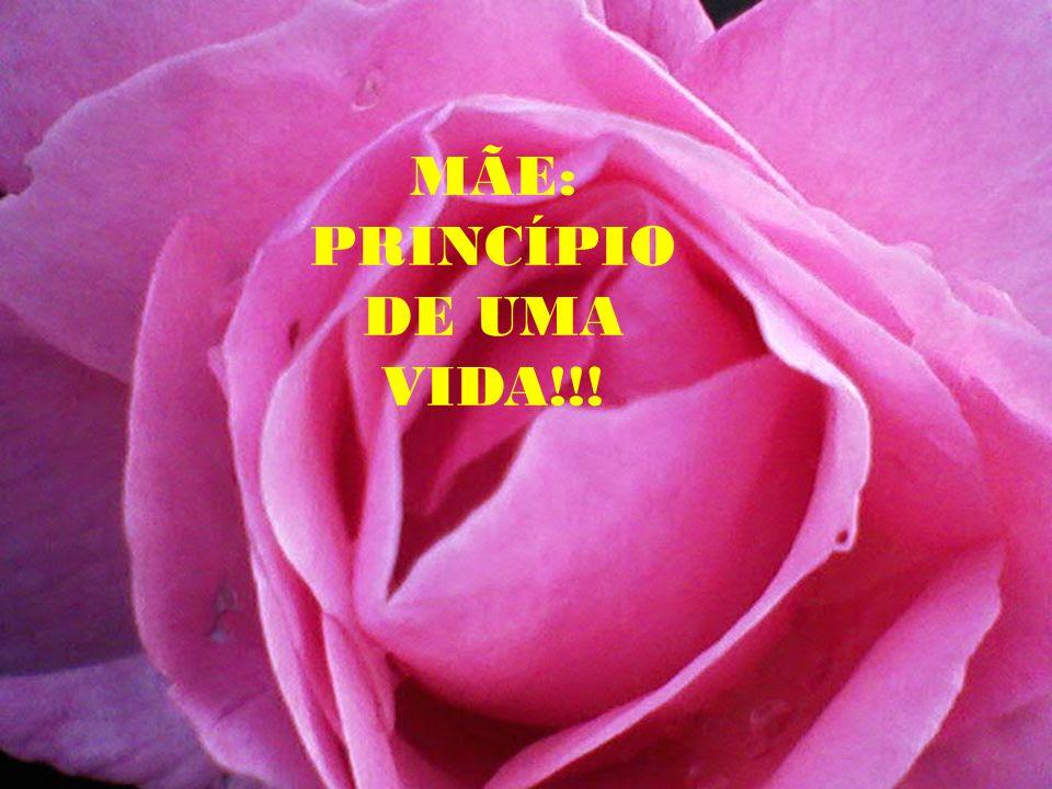 MÃE: PRINCÍPIO DE UMA VIDA!!!