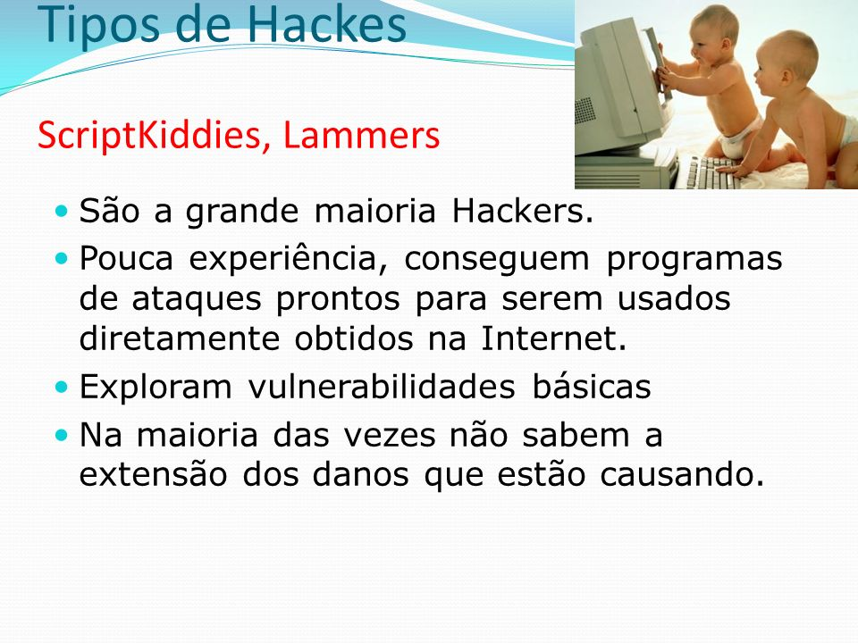 Tipos de Hackes ScriptKiddies, Lammers