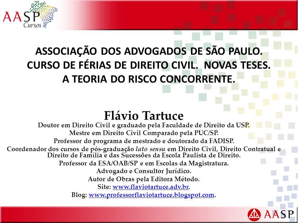 ASSOCIAÇÃO DOS ADVOGADOS DE SÃO PAULO. CURSO DE FÉRIAS DE DIREITO CIVIL. NOVAS TESES. A TEORIA DO RISCO CONCORRENTE.