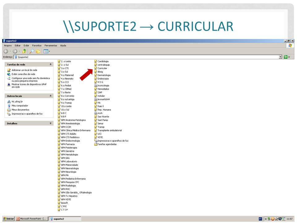 \\suporte2 → Curricular