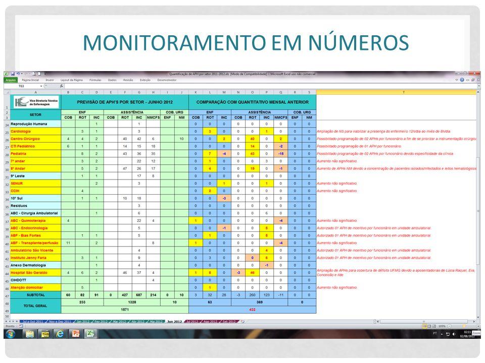 Monitoramento em números