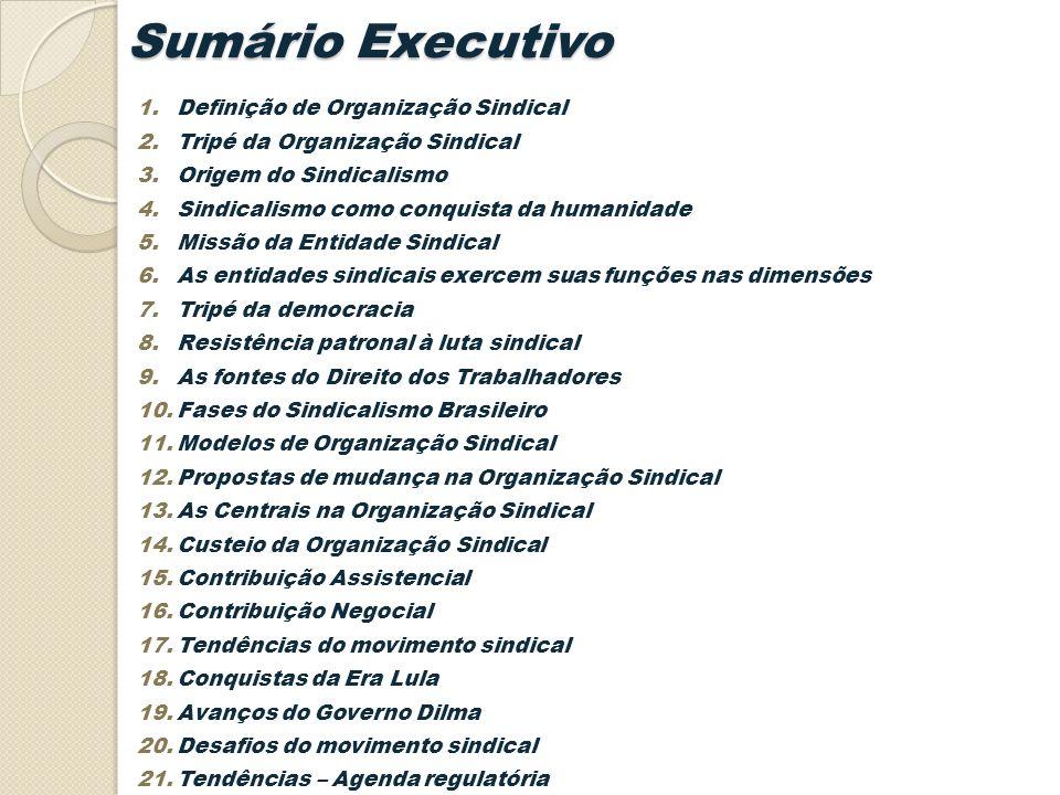 Sumário Executivo Definição de Organização Sindical