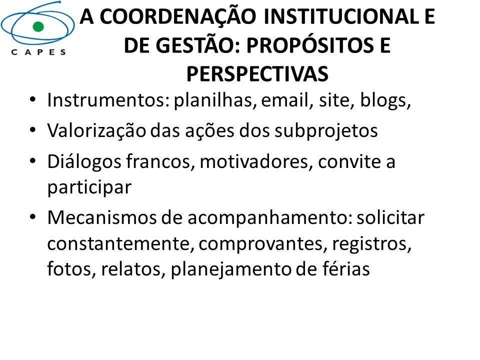 A COORDENAÇÃO INSTITUCIONAL E DE GESTÃO: PROPÓSITOS E PERSPECTIVAS