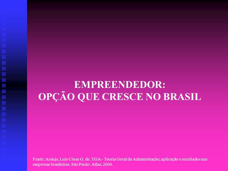 EMPREENDEDOR: OPÇÃO QUE CRESCE NO BRASIL