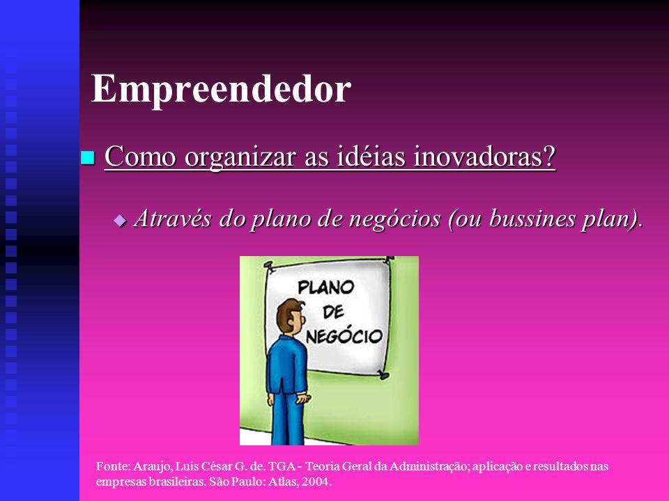 Empreendedor Como organizar as idéias inovadoras