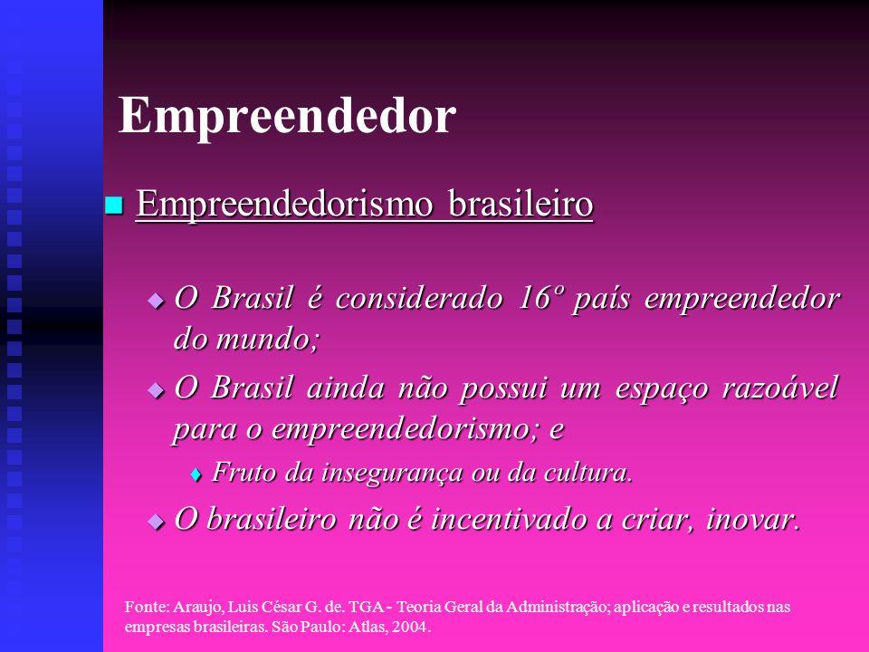 Empreendedor Empreendedorismo brasileiro