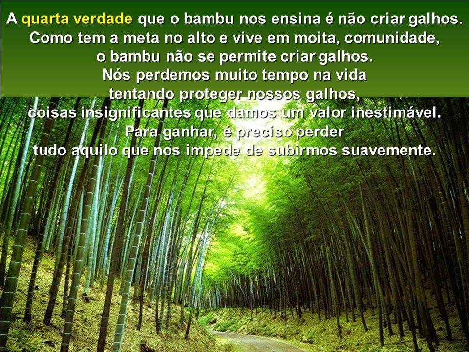 A quarta verdade que o bambu nos ensina é não criar galhos.