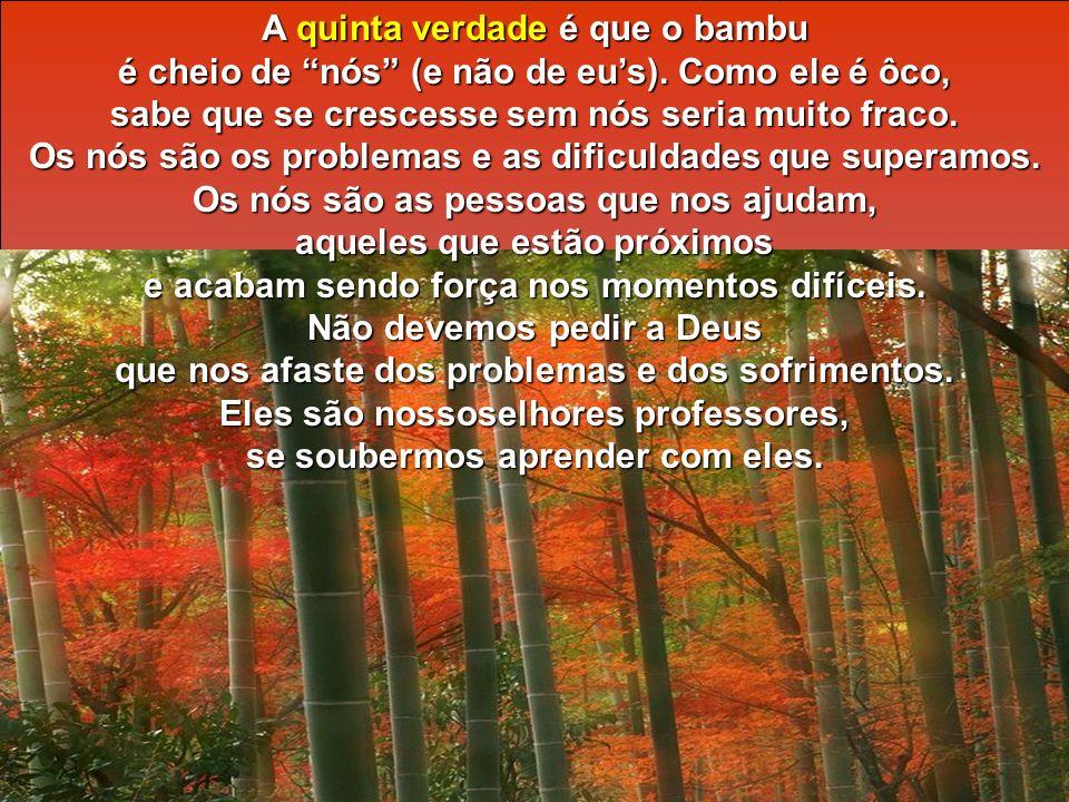A quinta verdade é que o bambu