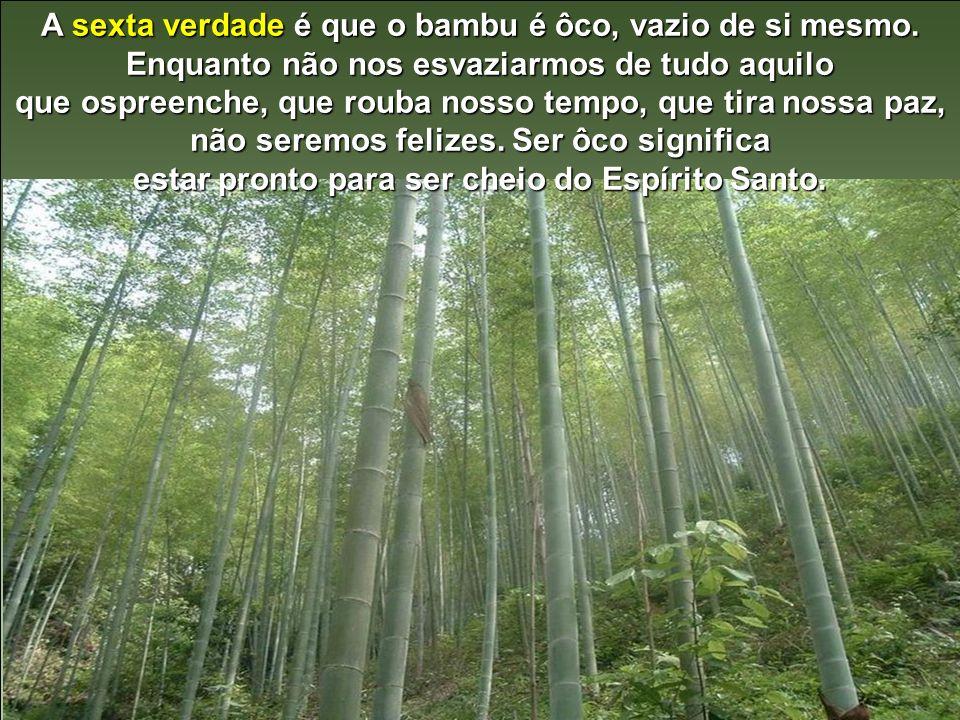 A sexta verdade é que o bambu é ôco, vazio de si mesmo.