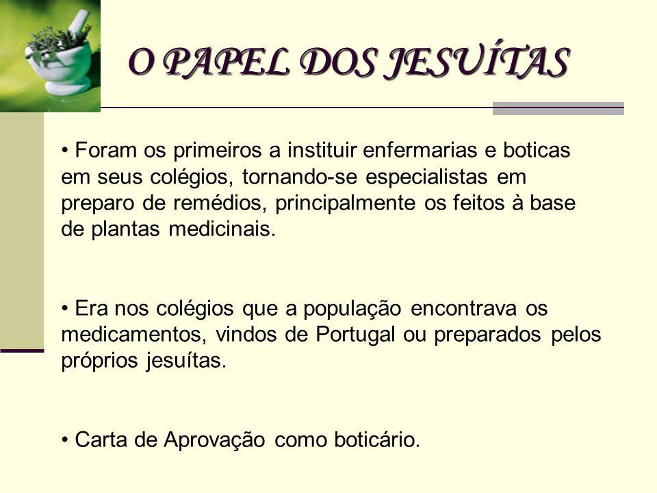 O PAPEL DOS JESUÍTAS