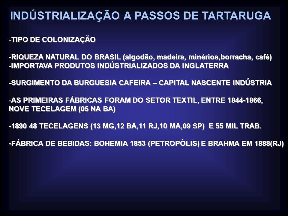 INDÚSTRIALIZAÇÃO A PASSOS DE TARTARUGA