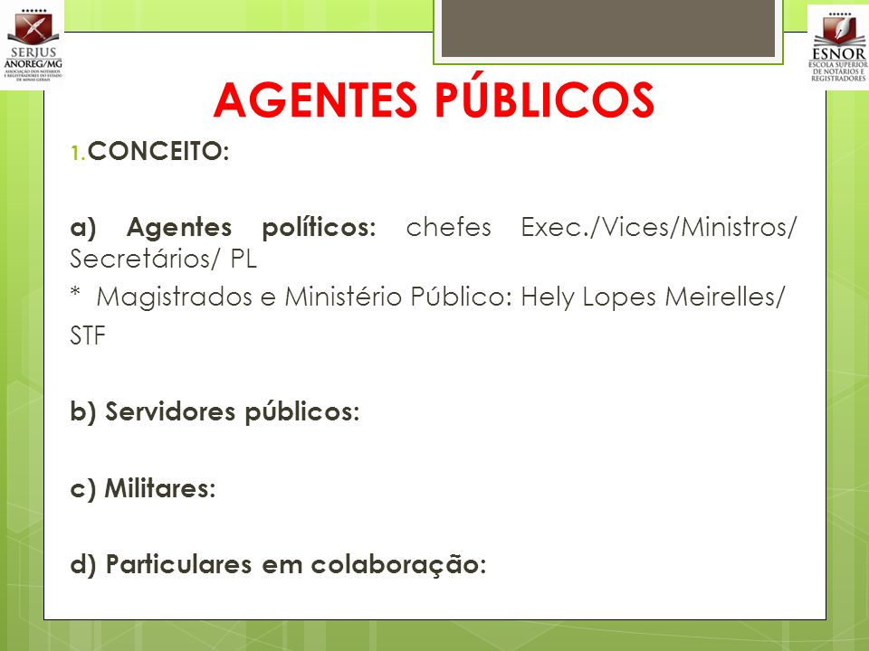 AGENTES PÚBLICOS CONCEITO: