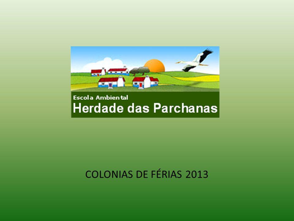 COLONIAS DE FÉRIAS 2013