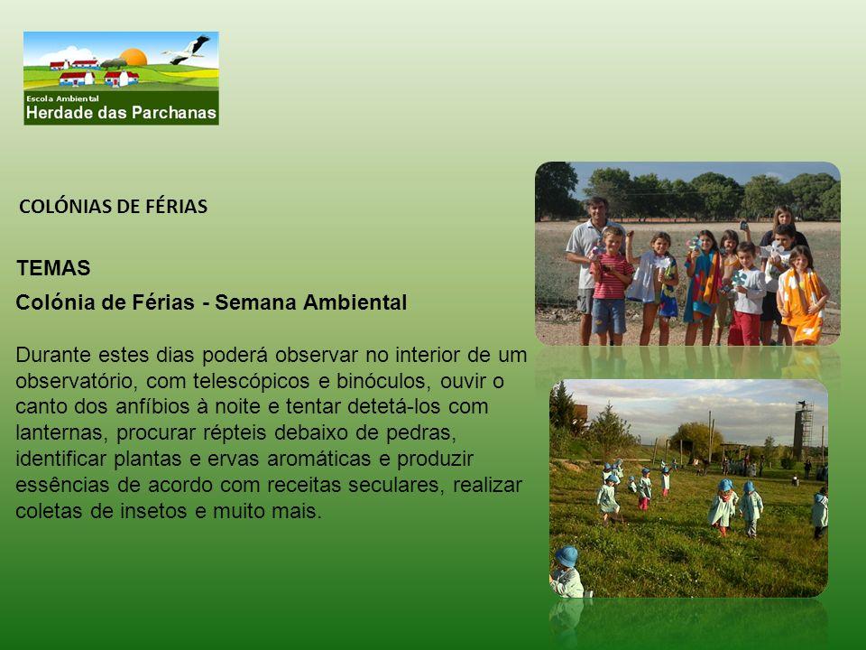 COLÓNIAS DE FÉRIAS TEMAS. Colónia de Férias - Semana Ambiental.