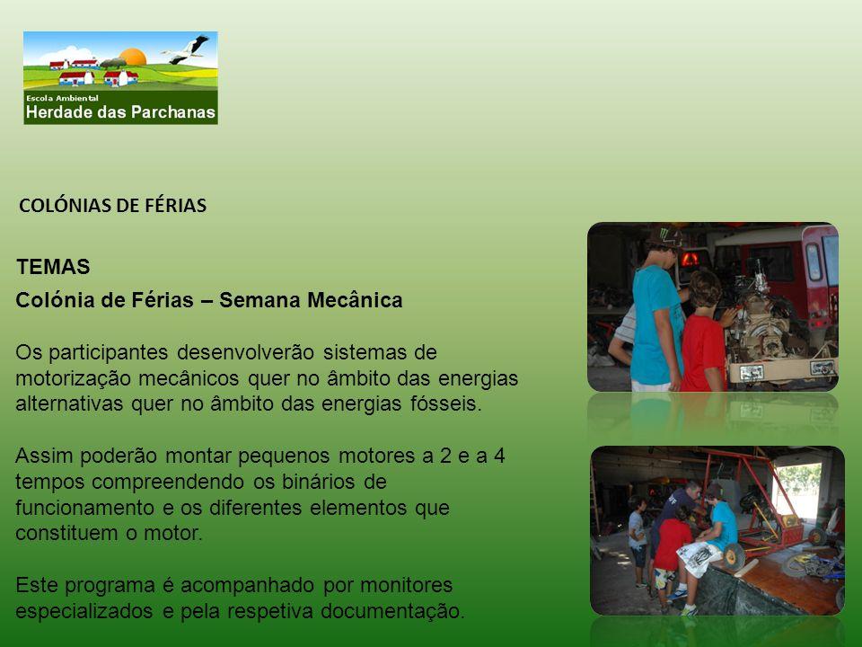 COLÓNIAS DE FÉRIAS TEMAS. Colónia de Férias – Semana Mecânica.