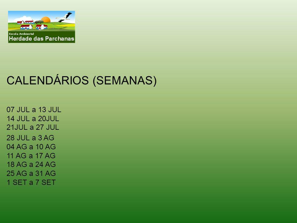 CALENDÁRIOS (SEMANAS)